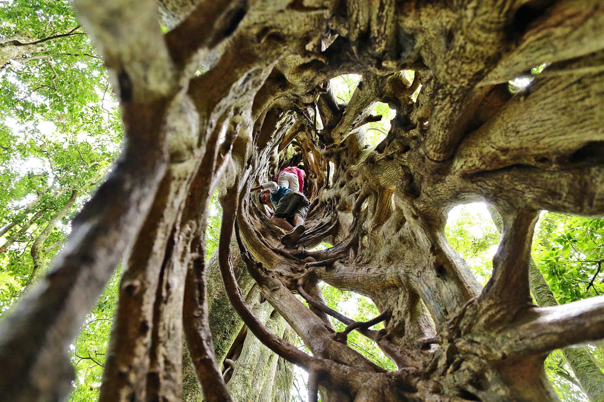 kostaryka podróże z dzieckiem